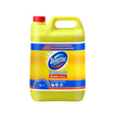 Domestos Bleach Citrus Fresh