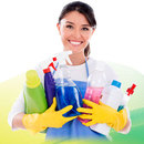 Bleaches & Disinfectants