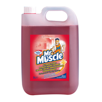 Mr Muscle Professional All Purpose Cleaner
